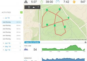 interface web runkeeper